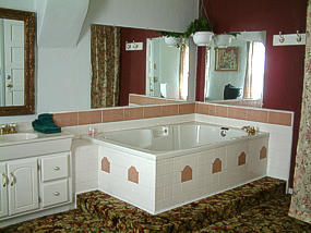 Hotel room with hot tub spa